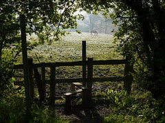 Sussex Border Path Section 14