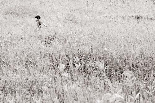 """""""所有好事都是野性的,自由。""""〜Henry David Thoreau"""