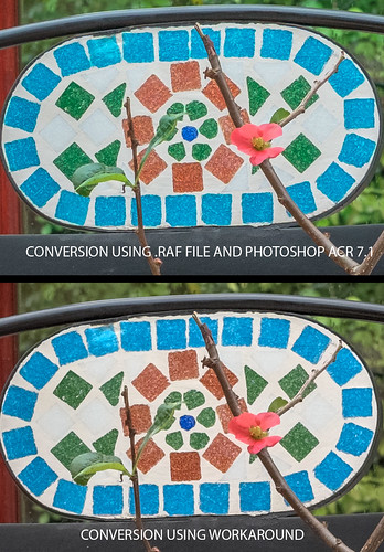 Fuji X-Pro-1 35mm f/1.4 lens