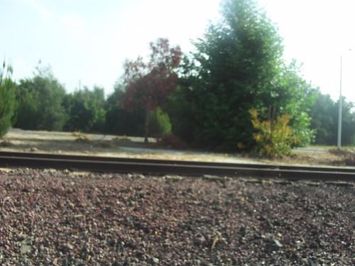 Abandoned Railroad Track by MountainGirl78