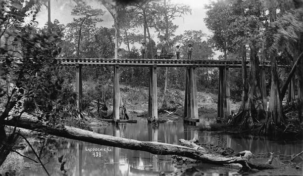 Railroad workers on a bridge - Lacoochee, Florida