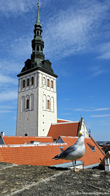View of St. Nicholas' Church Tower