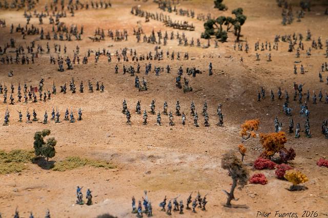 """XVI Recreación Histórica """"La Batalla de La Albuera"""""""