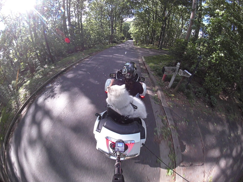 JAG rides a HOG