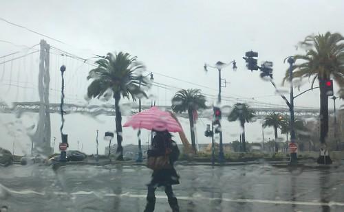Bay Area Rain