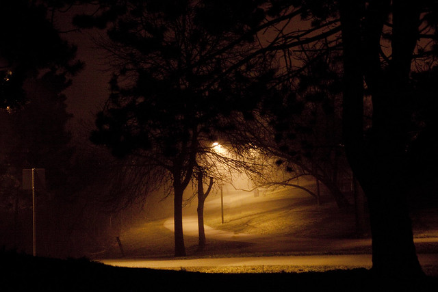 foggy night park path