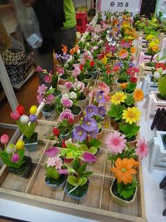 有各式各樣的花卉