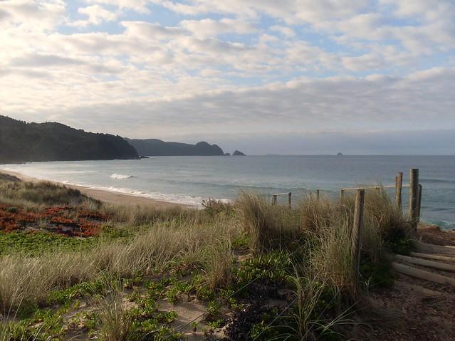 coromandel beach
