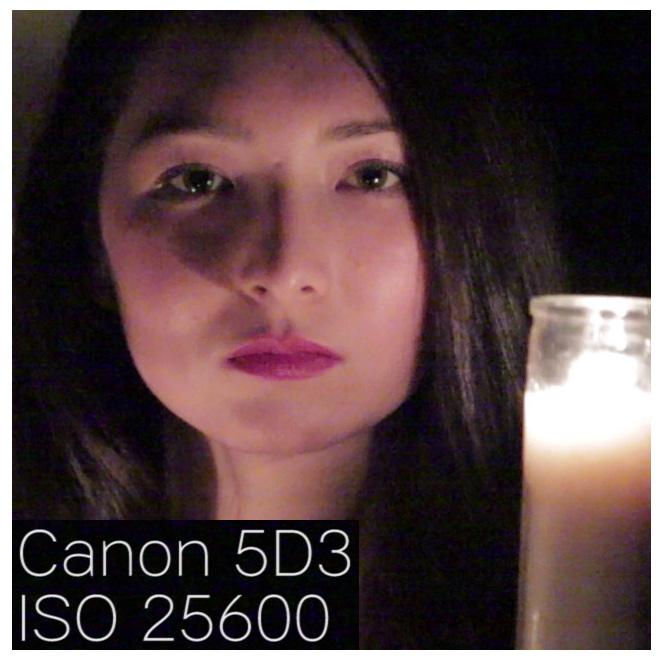 canon5d3_iso25600_100percentcrop