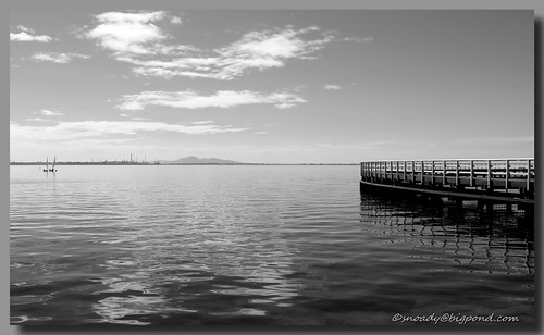 autumn on the bay bw