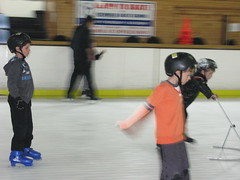 skating, winter sport, sports, recreation, ice skating, ice rink,
