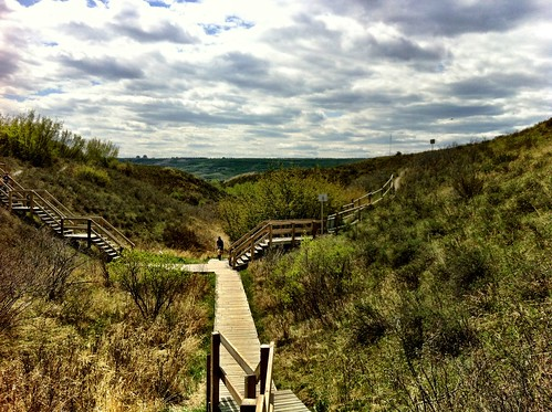 Calgary Kid Friendly Hikes: Waterfall Valley in Bowmont Park