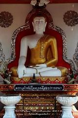 IMG_0632 Temples at San Pa Tong, วัดทึ่สันป่าตอง