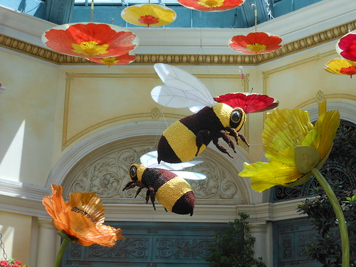 Bellagio - Bees!