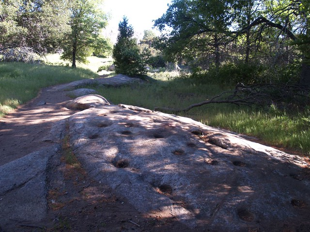 Ancient Native Morteros on the Azalea Glen Loop Trail