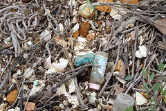 wood, scrap, litter, earthquake, waste,