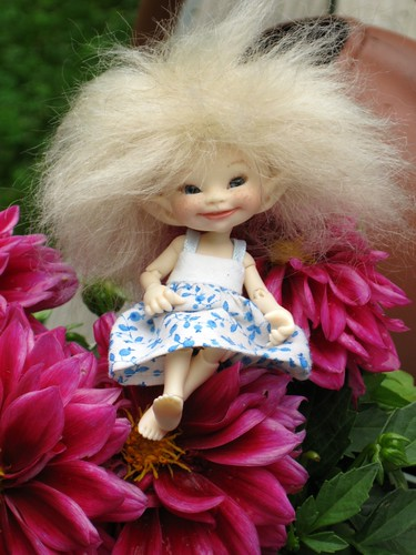 Soso in Dahlias by elizabeth's*whimsies