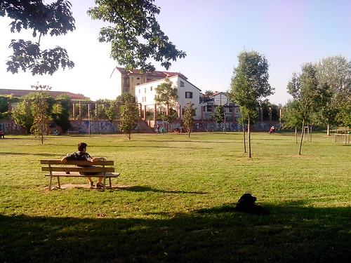 Cane, uomo, alberi, case by durishti