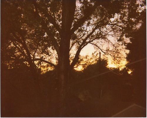 a june sunset, after a thunderstorm