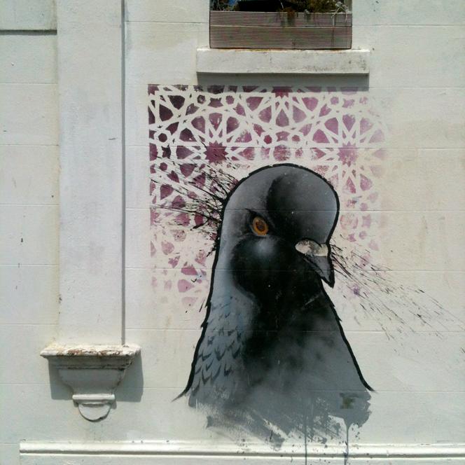 pigeon_graffiti