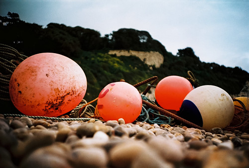 the beach buoys