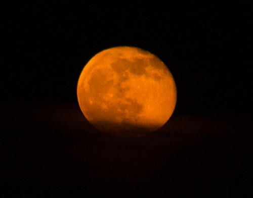 Orange Squash Moon 16 April 2014