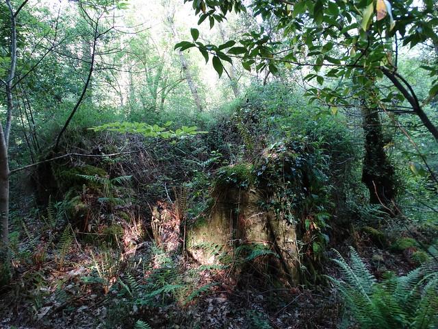 Ruinas de molino en Oza-Cesuras