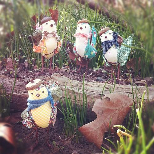 la primavera de aventura