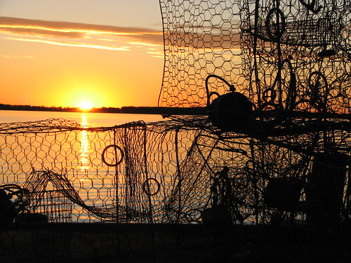 Crab Pots, St. Mary's County
