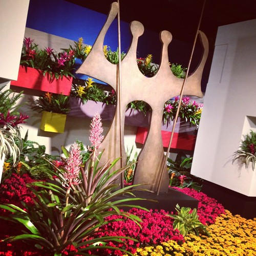 Macy's Flower Show - Brazil