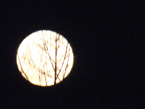 The Super Moon rising in Middlefield 3/19/11