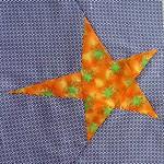 Maree's Star #2
