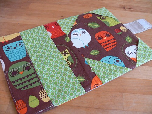 Jenny: Owl Cover for Kindle