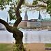 2 -  Alster Park, Hamburg, Germany -Nikon D800 Testing