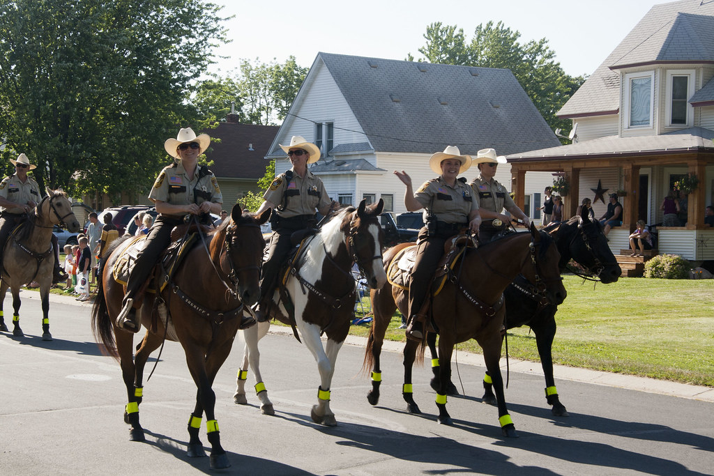 goodhue county A sheriff is an elected law enforcement official for a county sheriffs usually have policing jurisdiction over unincorporated areas of the county, though in some states, sheriffs have jurisdiction throughout the state.