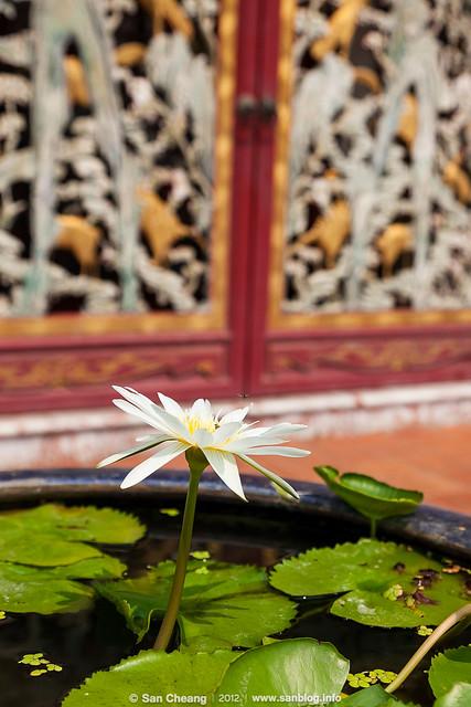 Thailand_2012-02-26-7471_2