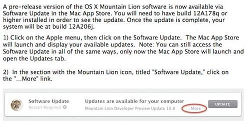 OS X Mountain Lion build 12a206j