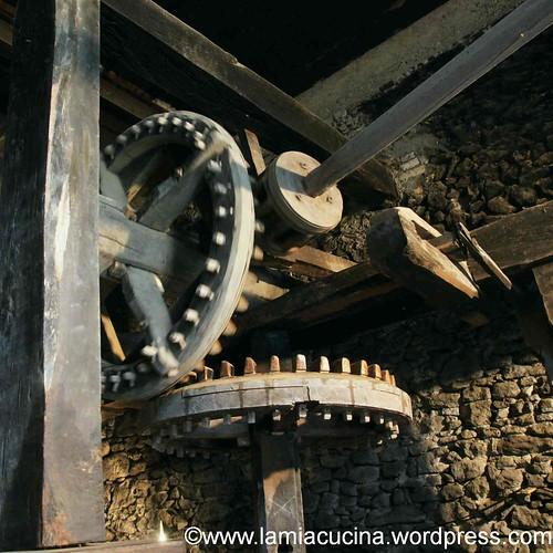Mühlentag 0_2012 05 19_5032