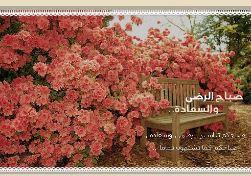 صباحك أحلى بذكر الله 7240194410_323181b188_z