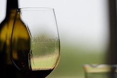 alcohol(1.0), wine glass(1.0), wine(1.0), drinkware(1.0), stemware(1.0), distilled beverage(1.0), liqueur(1.0), bottle(1.0), glass(1.0), white wine(1.0), red wine(1.0), close-up(1.0), drink(1.0), wine bottle(1.0), alcoholic beverage(1.0),