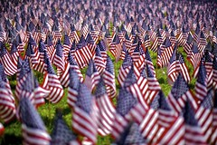 [Free Images] Wars, Cemetery, National Flag, National Flag - United States of America ID:201205310000