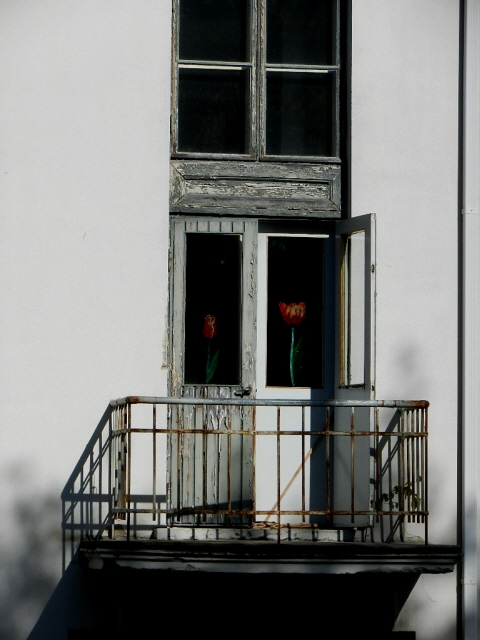 Sjoki_2012_1