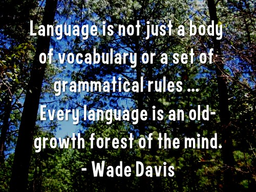 Language is an old-growth forest of the mind
