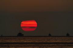 [フリー画像素材] 自然風景, 海, 朝焼け・夕焼け, 太陽, 水平線, 風景 - 日本 ID:201206032000
