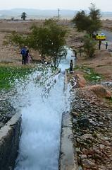 Auja泉水區