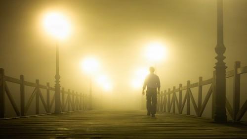 Niebla / Fog
