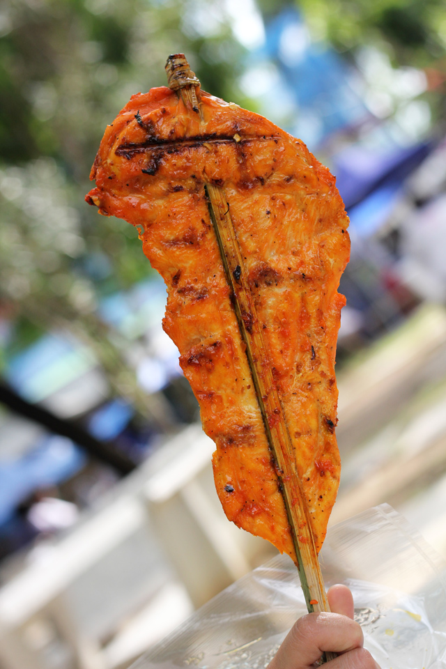 My beautiful Africa shaped piece of grilled chicken