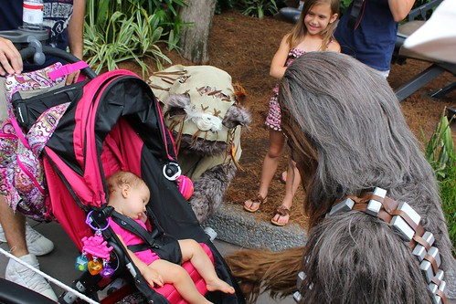 Ewok, Chewbacca