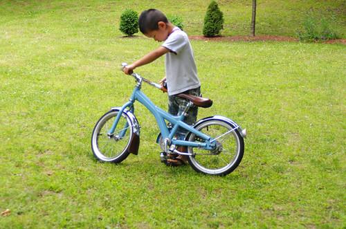 Fugo's Bike