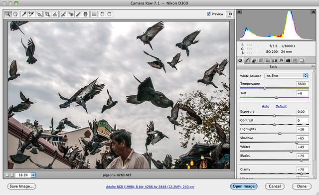 Adobe Camera RAW 7.0